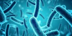 الأدوية المستخدمة لعلاج الأمراض التي تسببها البكتيريا اللاهوائية