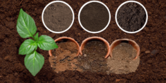 تعريف التربة أنواعها ومكوناتها وأهميتها وأهداف التربة وطرق حمايتها